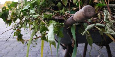 In Dürnten gibt's zwei zusätzliche Grüngutsammlungen im Winter. (Symbolbild)