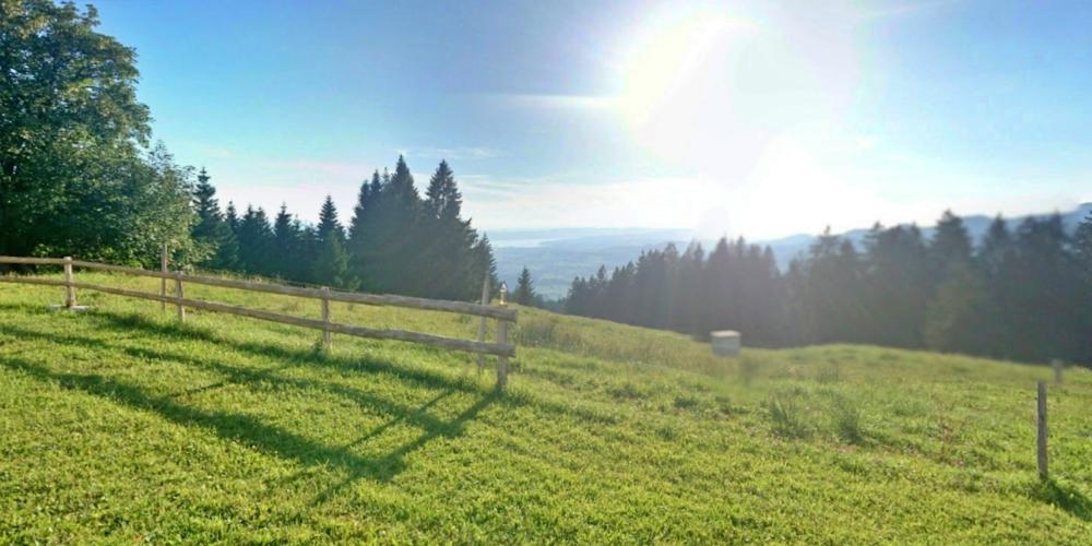 Am Samstag werden die Alp Rittmarren, die Alp Egg und die Alp Klosterberg gesegnet.