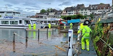 Der Werkdienst von Rapperswil-Jona arbeitete intensiv daran, das Schwemmholz aus dem Hafen zu entfernen.