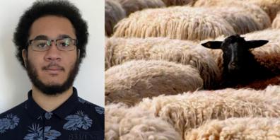 Patrice Ezeogukwu über schwarze und weisse Schafe