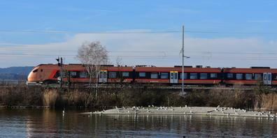 Ab dem 10. Juli muss man für die Strecke Rapperswil–Uznach rund 20 Minuten länger fahren.