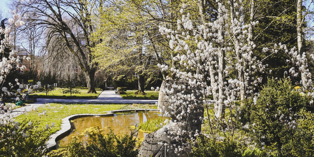 Friedhof Bruggen