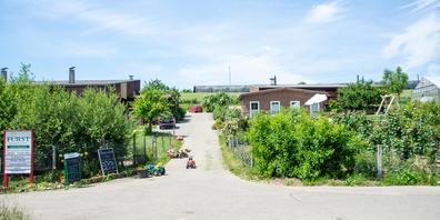 Der sehr idyllisch gelegene Selbstpflückhof der Familie Fürst zwischen den Gemeinden Dachsen und Uhwiesen.