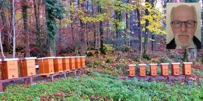 Wolfhard Hüsken macht sich seit vielen Jahren um die Züchtung und Prüfung der reinrassigen «Glarner dunklen Biene» verdient – nun muss er 20 neue Völker aufbauen.