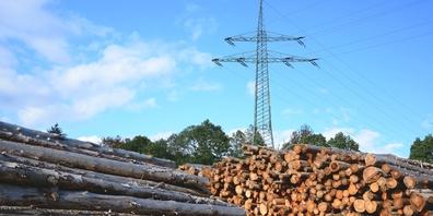 Die Partei will sich an der Kantonsratssession für die Energieproduktion aus Holz einsetzen. (Symbolbild)