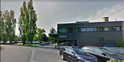 Die Stadt verlangt fürs Enea-Baummuseum in Rapperswil-Jona ein Zertifikat.
