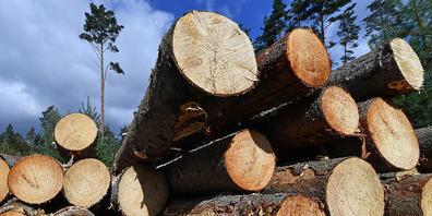 Holzforscher haben den nachwachsenden Rohstoff in einem mehrstufigen Verfahren so behandelt, dass er sich verformen lässt. (Archivbild)