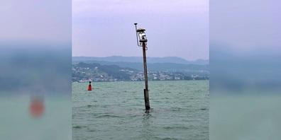 Der genaue Unfallhergang wird durch die Kantonspolizei Zürich in Zusammenarbeit mit der Staatsanwaltschaft See/Oberland untersucht.