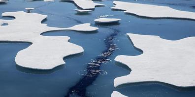 ARCHIV - Klimawandel, Übernutzung und Umweltverschmutzung stellen eine nie dagewesene Belastung für die Meere weltweit dar. (Archivbild) Foto: David Goldman/AP/dpa