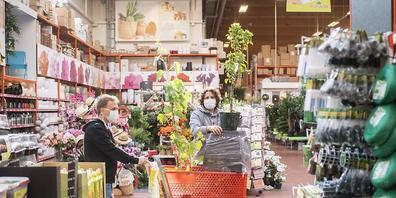 Deutlich im Aufschwung waren im ersten Halbjahr die Do-it-yourself- und die Gartencenter. (Archivbild)
