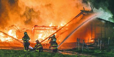 Der Bauernhof in Trachslau brannte komplett nieder. Weil zwei Kälber starben, wurde der Tierschutz aktiv. Das passt längst nicht allen.