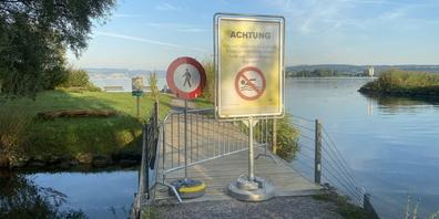 Achtung giftige Blaualgen: Die Gemeinde Freienbach warnt beim Hurdner Durchstich vor einem Bad im See.