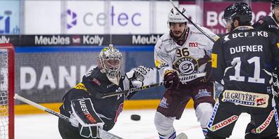 Weiter im Hoch: Fribourg-Goalie Reto Berra wehrt 33 Schüsse von Servette ab und verhilft Fribourg-Gottéron zum achten Sieg in Serie