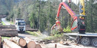 Der Gebirgsharvester rüstet die gefällten Bäume zu, der Lastwagen lädt das Rundholz mit eigenem Kran.