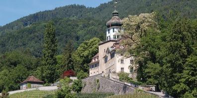 Schloss Grünenstein, wo der «Froschkönig» seit Jahren kleine, feine Kunst-Stückchen anbietet