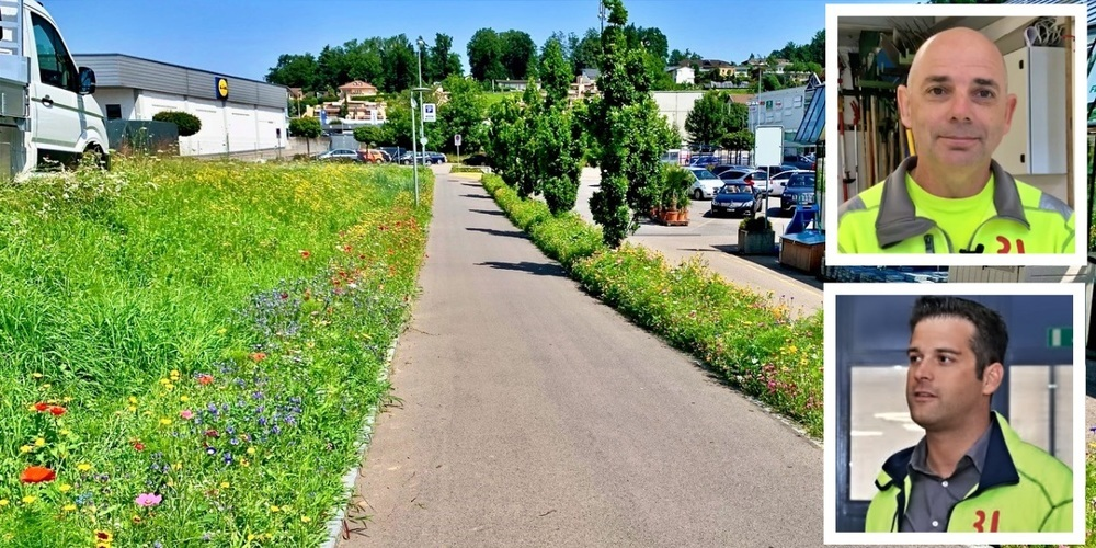 Arbeiter wie Corsin Tuor, Leiter Werkdienst (u.) und Stadtgärtner Moacir Kunrath sorgen dafür, dass es in Rapperswil-Jona überall in jeglichen Farben blüht.