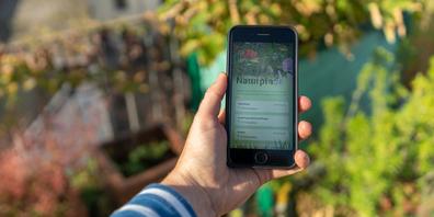 Via App spielerisch Naturschätze vor der Haustür entdecken.