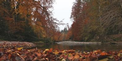 Jonas lange Geschichte hängt auch mit dem gleichnamigen Fluss zusammen.