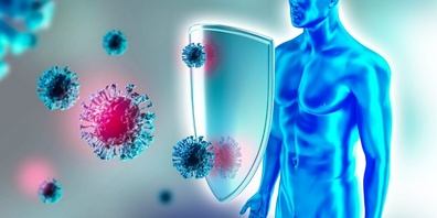 Ist die Immunabwehr nach einer Corona–Infektion nur auf sechs Monate begrenzt?