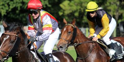 Im Maienfeld wird am 3. und 10. Oktober 2021 wieder attraktiver Pferderennsport geboten.