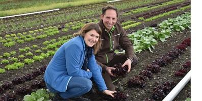 Sonja und Markus Bernhardsgrütter kontrollieren die Salate, die neu nach Bionorm produziert werden.