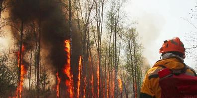 HANDOUT - Im Kampf gegen die verheerenden Waldbrände in Russland bekommen die Einsatzkräfte weitere Verstärkung vom Militär. Foto: -/Aerial Forest Protection Service via Sputnik/dpa Foto: -/Aerial Forest Protection Service via Sputnik/dpa - ACHTUN...