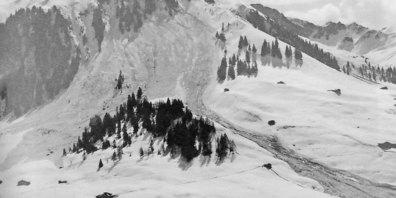 Die Schluhen-Lawine auf der Aschariner Talseite vom 11. April 1937 erreichte fast den Schanielabach. Das Foto stammt aus dem Buch  «Die Geschichte der St.Antönier Lawinen» von Holger Finze.
