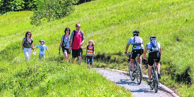 In der Region sind immer mehr Biker auch auf Wanderwegen unterwegs.