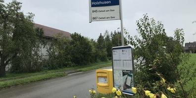 Diese Bushaltestelle in Holzhausen wird aufgehoben.