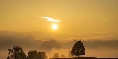 Goldener Oktober über dem Emmental (Aufnahme vom 16. 10. 2021 in der Nähe von Affoltern).