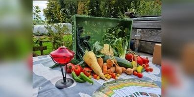 Die Natur schenkt das ganze Jahr reichhaltige Kost. Im Herbst können wir uns an den warmen Farben der Kürbisse und dem Obst erfreuen.
