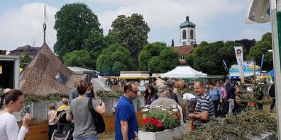 Maimarkt Gossau 2019