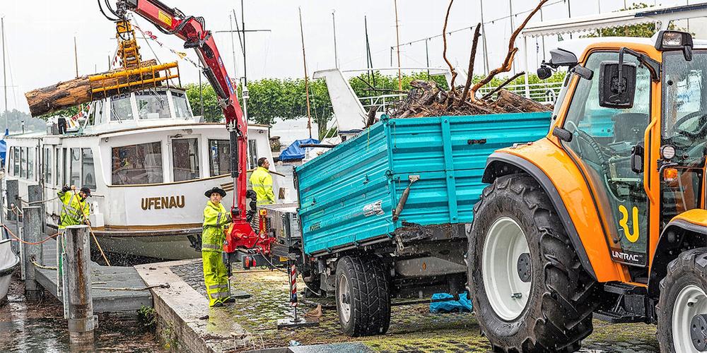 Das Schwemmholz wurde aus dem Hafen Rapperswil abtransportiert.