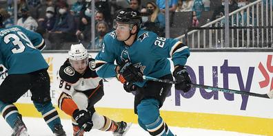 Timo Meier befindet sich seit Beginn der NHL-Saison in ausgezeichneter Verfassung