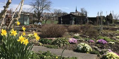 Gartenoase in Gossau: der Schrebergarten Unterdorf