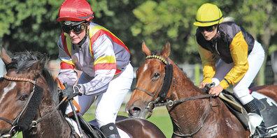 Packendes Duell an den internationalen Pferderennen Maienfeld.