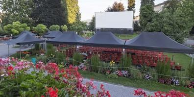 Die Filmnächte im Rosenmattpark in Wädenswil versprechen einmal mehr grossen Filmgenuss.