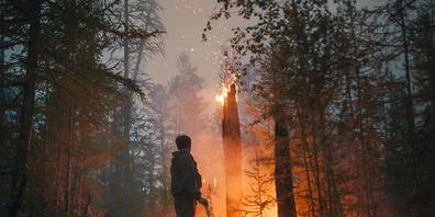 Ein Freiwilliger überwacht ein Gegenfeuer, das die Ausbreitung des Feuers soll. Waldbrände haben in Russland große Verwüstung angerichtet. Allein in der sibirischen Republik Jakutien spricht die Zivilschutzbehörde von Schäden in Höhe von mehr als ...