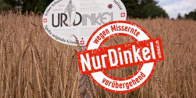 Trotz eingeleiteter Massnahmen wird der Schweizer UrDinkel knapp.