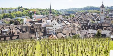 Die Stadt ist Grundeigentümerin der Rebberge beim Munot und in der Rheinhalde.