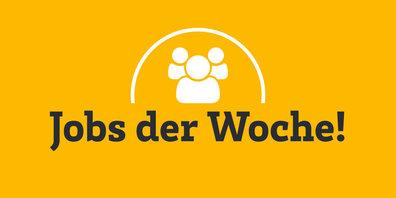 Aktuelle Stellenangebote im Bezirk Hinwil