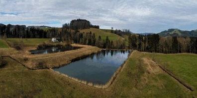Der Seelisbergweiher in Fischenthal wird saniert.