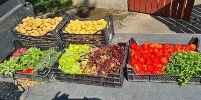 Gemüse für das Hotel Uzwil  aus dem eigenen Bio-Garten.