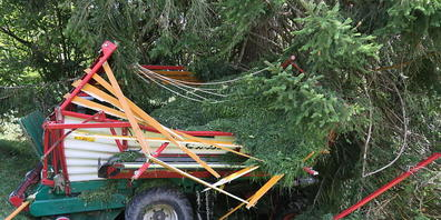 Der Landwirt wurde aus dem Ladewagen geschleudert, als dieser bei Näfels in einen Baum prallte.