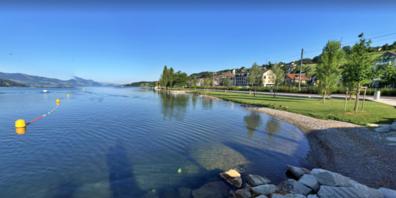 So sauber sieht die Bucht in Schmerikon normalerweise aus, nun liegt jedoch ein brauner Holzteppich darüber.