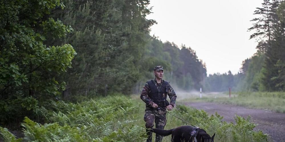ARCHIV - Ein Mitglied des litauischen Grenzschutzes patrouilliert mit einem Hund an der Grenze zu Belarus. Foto: Mindaugas Kulbis/AP/dpa