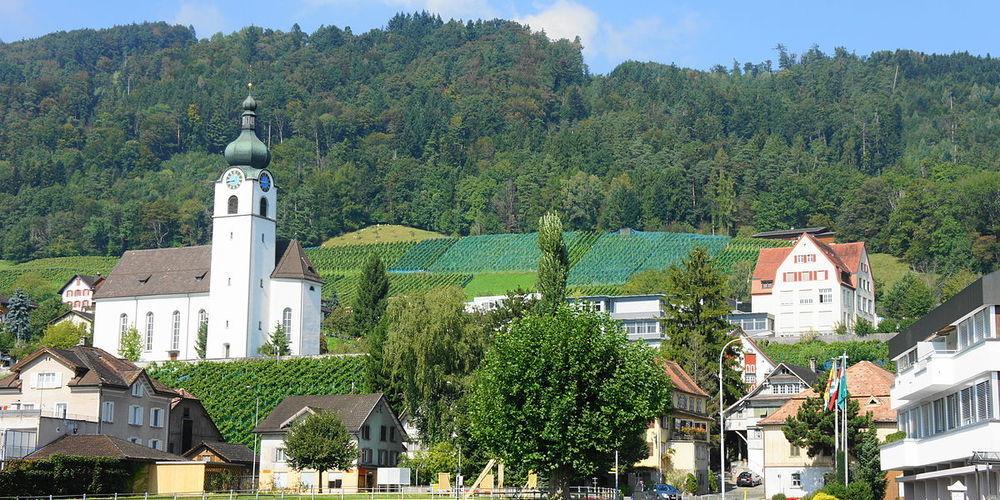 In Balgach zahlt man 2020 am wenigsten Gemeindesteuern im Kanton St.Gallen