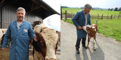 Marco Steiner gehört zu den führenden Handelsunternehmen im Bereich Viehhandel.