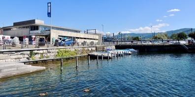 Die Bootsplätze im Rapperswiler Hafen stehen leer – Schuld daran sei erneut Corona.