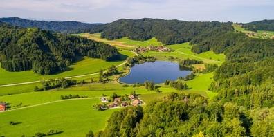Der Bichelsee liegt direkt auf der Kantonsgrenze auf dem Gemeindegebiet von Turbenthal (ZH) und Bichelsee-Balterswil (TG).